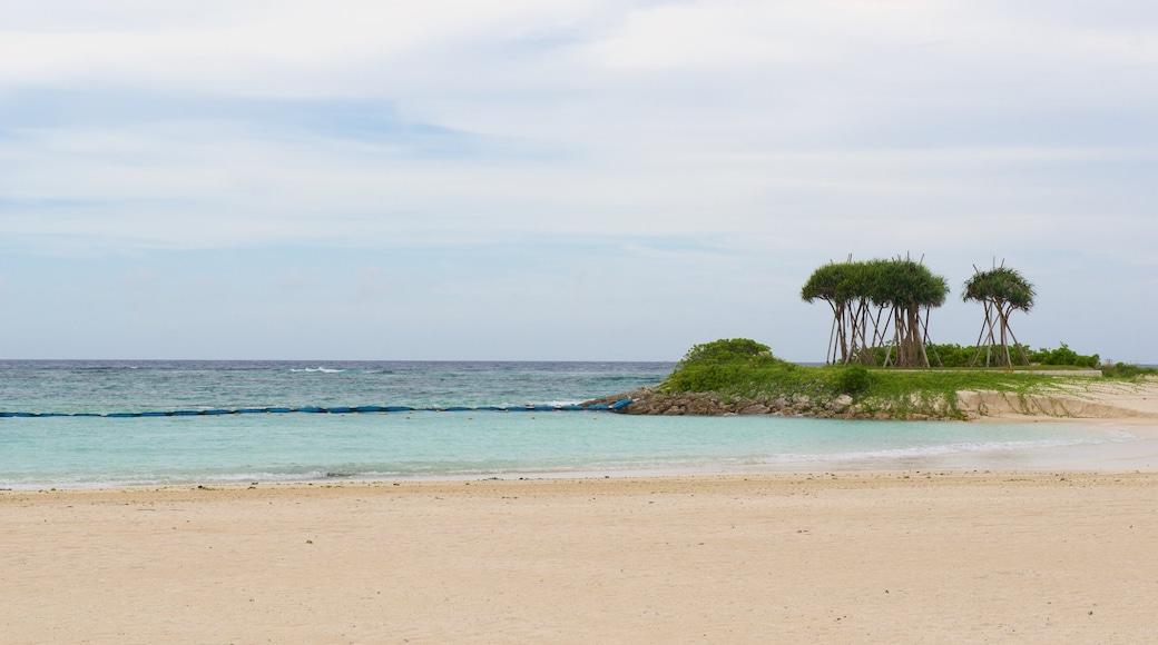 Okinawa mit einem Strand und Landschaften