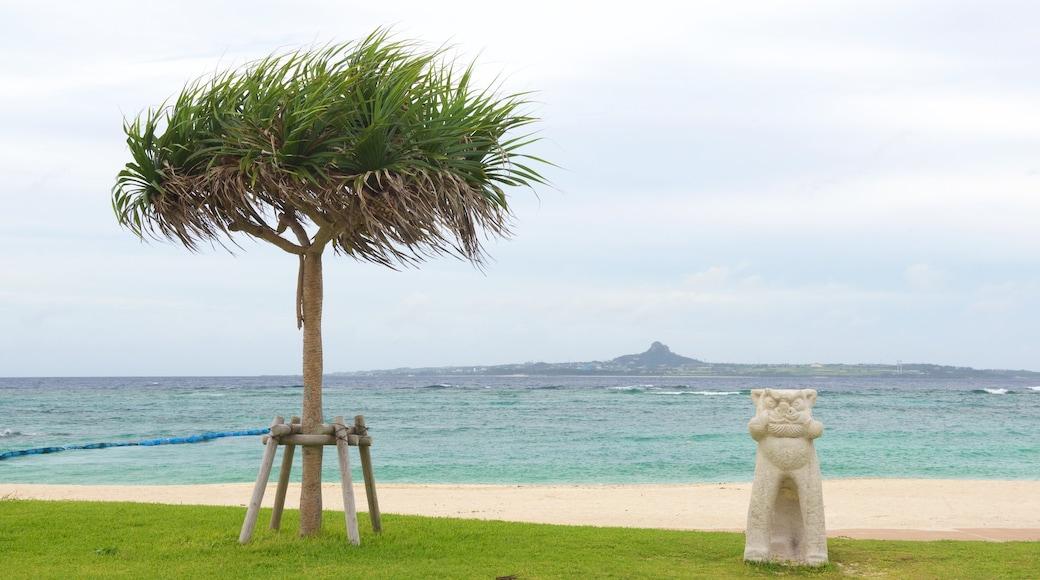 Emerald Beach welches beinhaltet Strand und allgemeine Küstenansicht