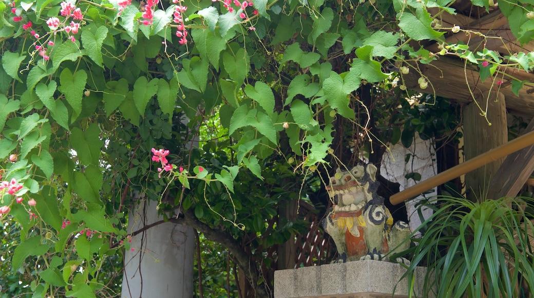 Okinawa featuring flowers