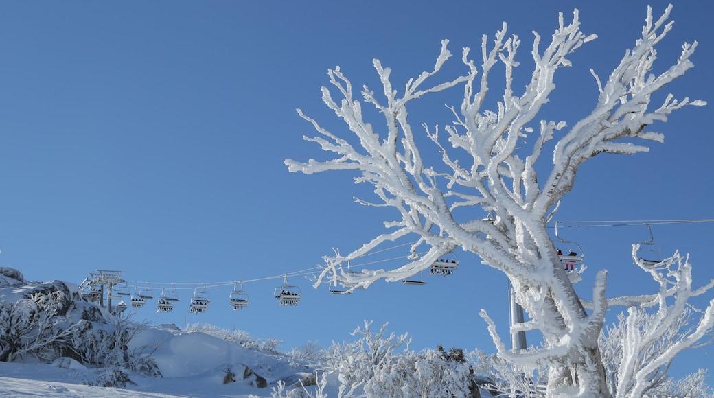 Perisher Ski Resort which includes a gondola and snow