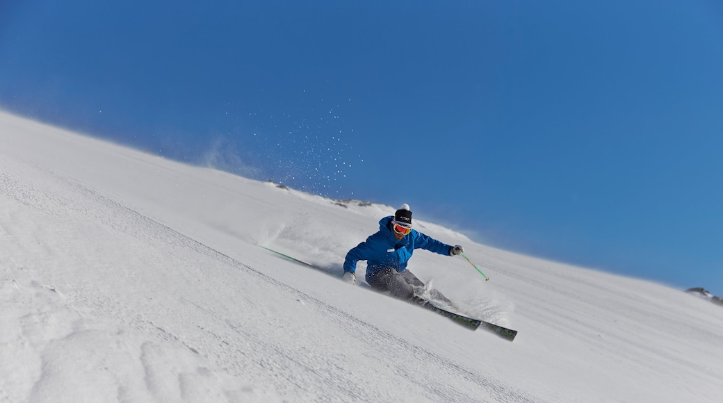 Perisher Ski Resort showing snow skiing and snow