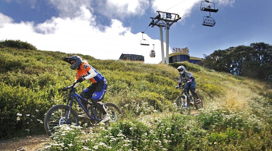 Mt. Buller Ski Slopes showing a gondola and mountain biking