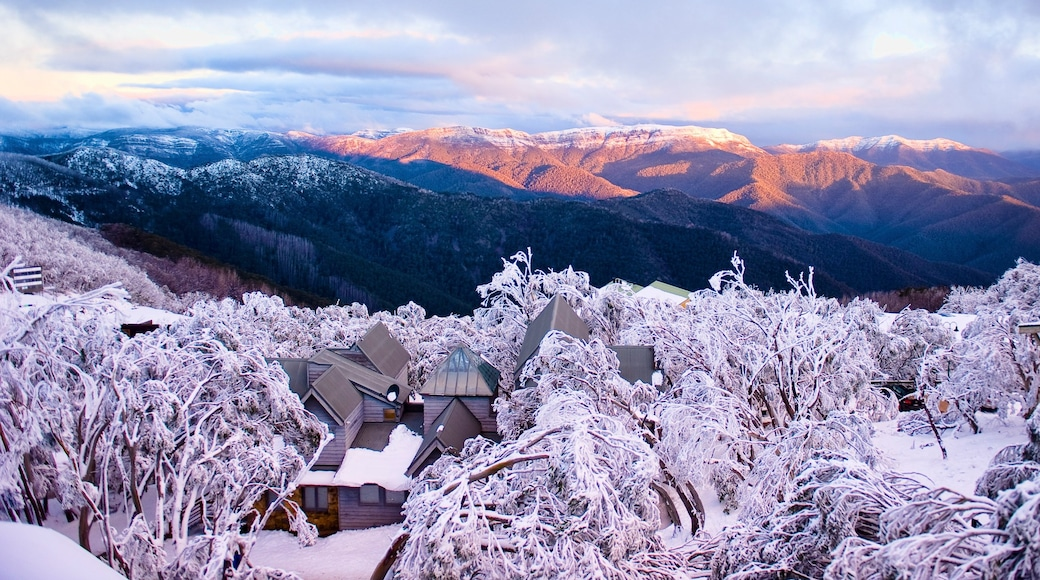 Mt. Buller Ski Slopes showing mountains, a sunset and a small town or village