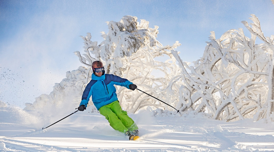 Mt. Buller Ski Slopes which includes snow skiing and snow