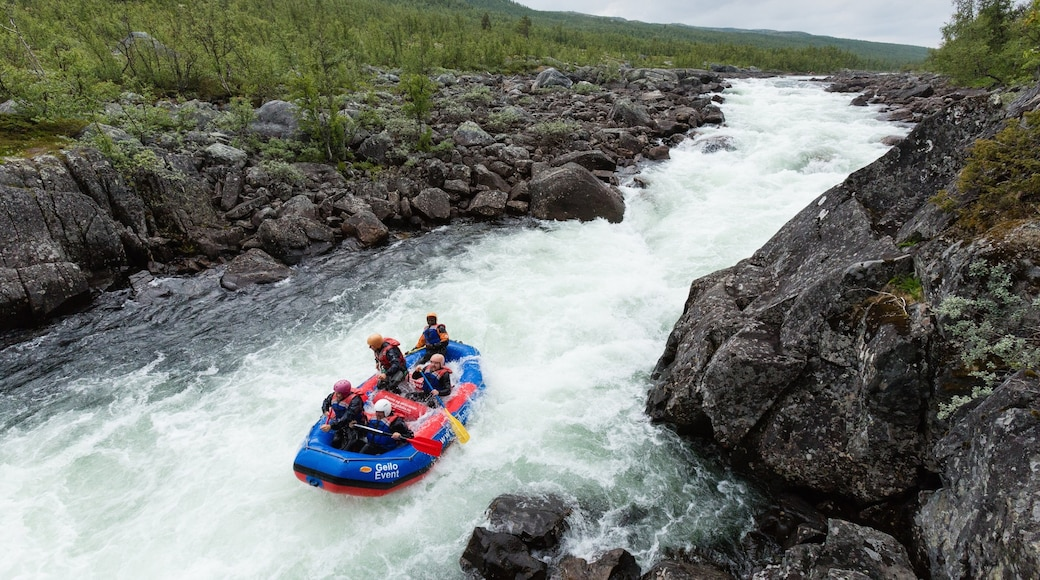 Geilo featuring forests, rapids and rafting