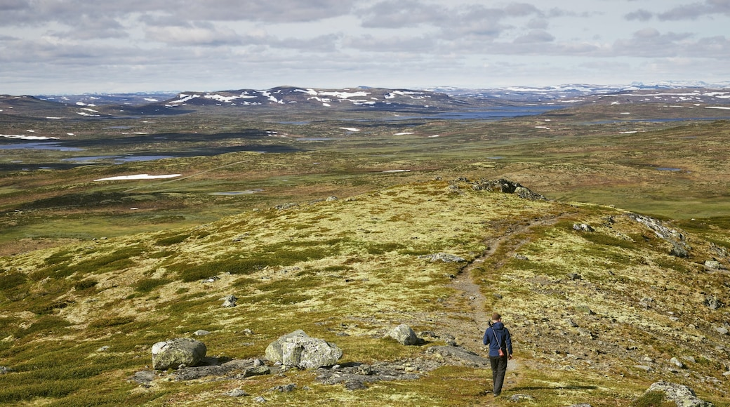 Geilo featuring tranquil scenes and hiking or walking
