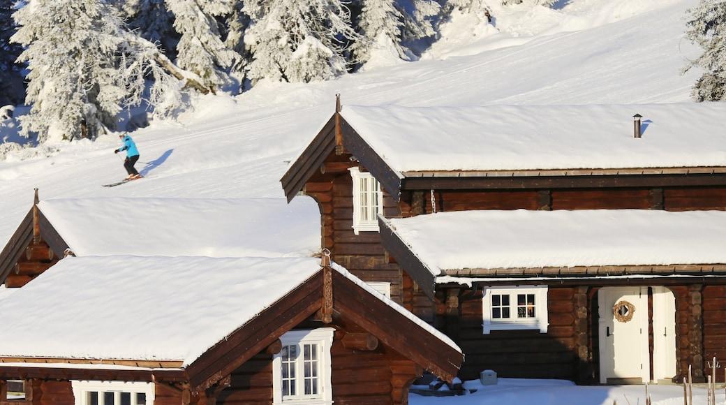 克維夫耶爾 其中包括 滑雪, 下雪 和 房屋