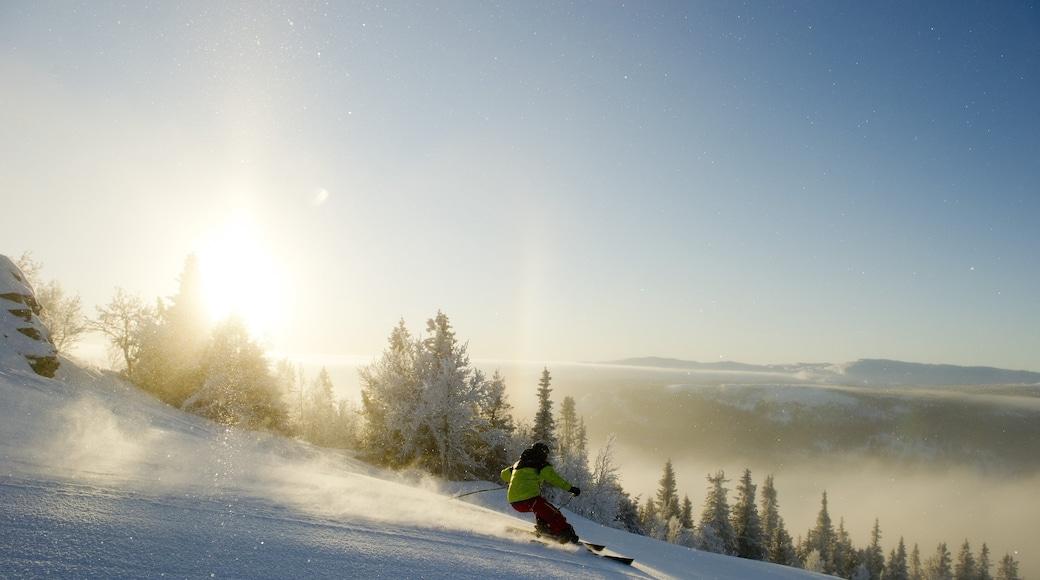 克維夫耶爾 呈现出 滑雪, 下雪 和 夕陽