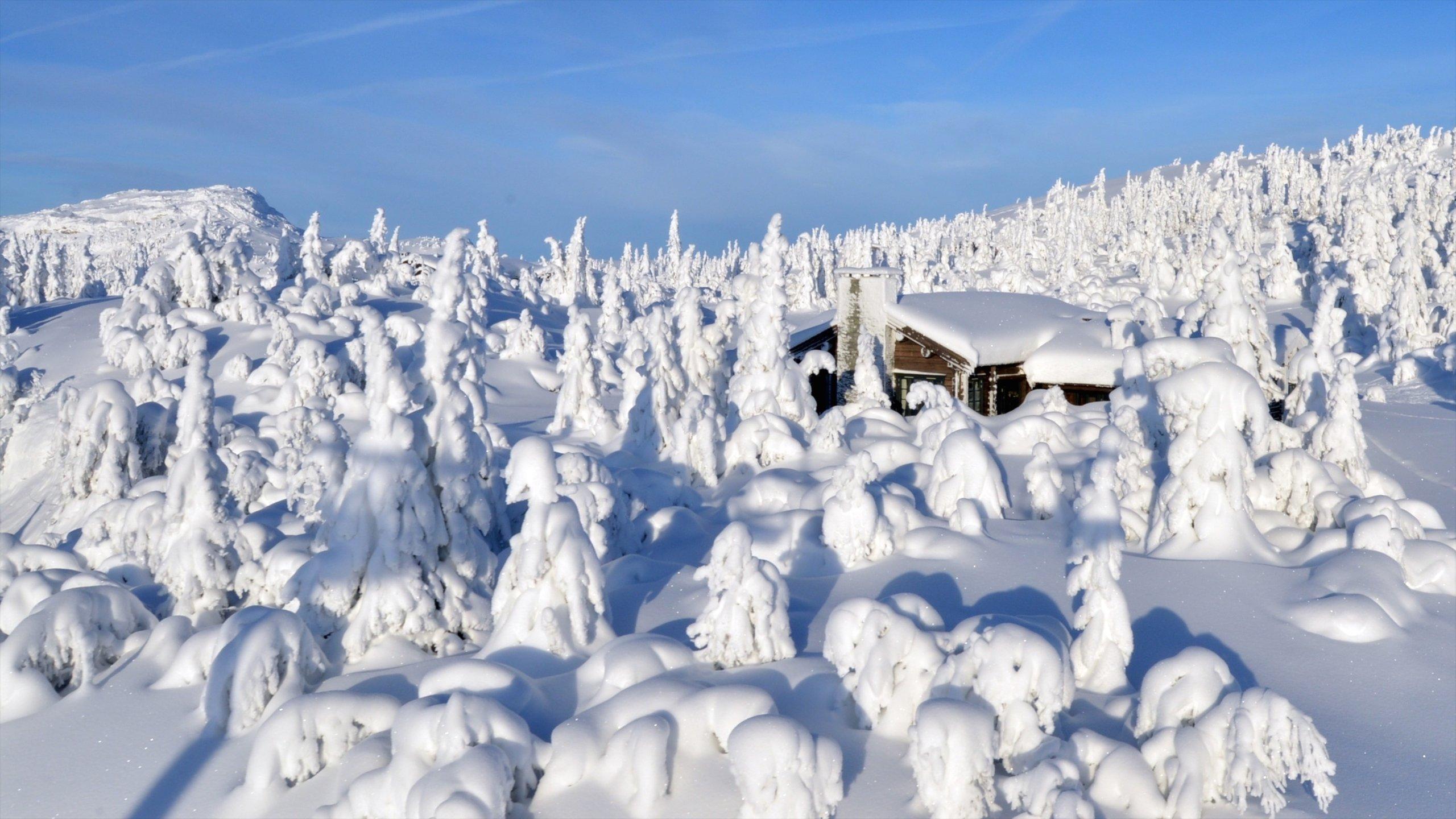 Ringebu, Innlandet, Norwegen