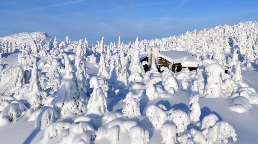 克維夫耶爾 设有 下雪 和 房屋