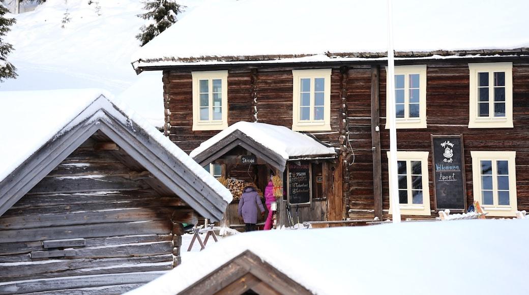 克維夫耶爾 其中包括 下雪 和 小鎮或村莊