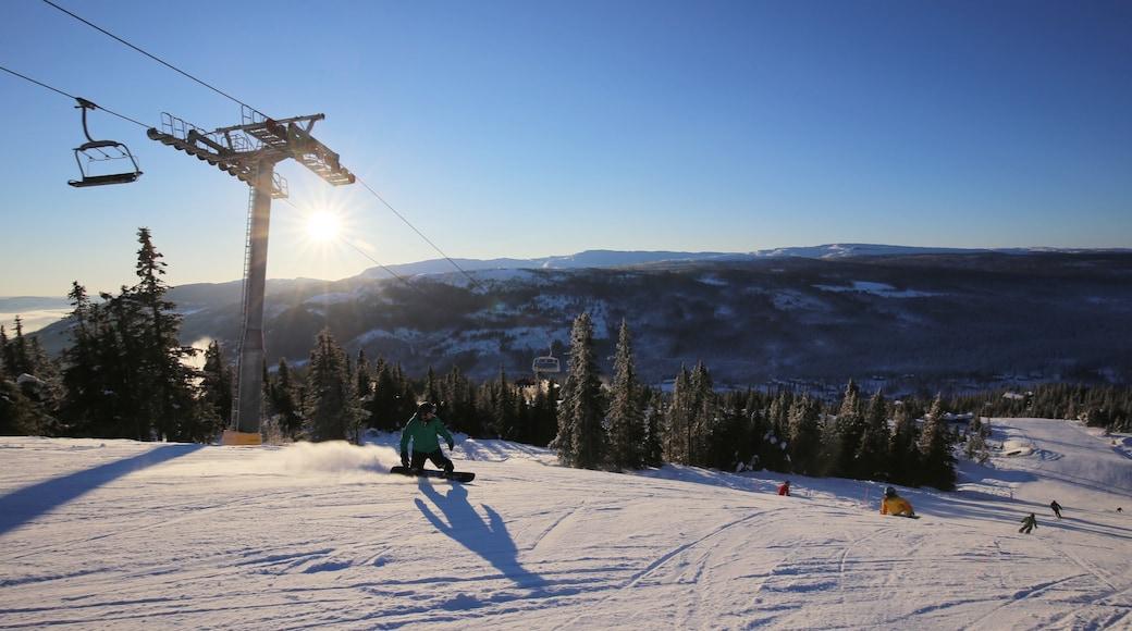 克維夫耶爾 设有 下雪, 纜車 和 滑雪