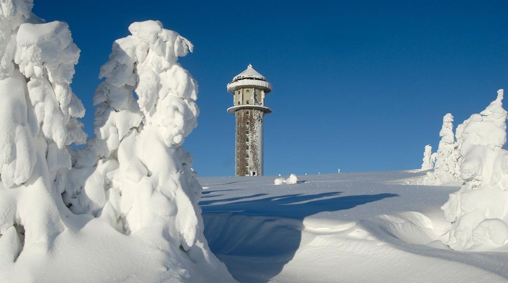 Skigebiet Feldberg welches beinhaltet Monument und Schnee