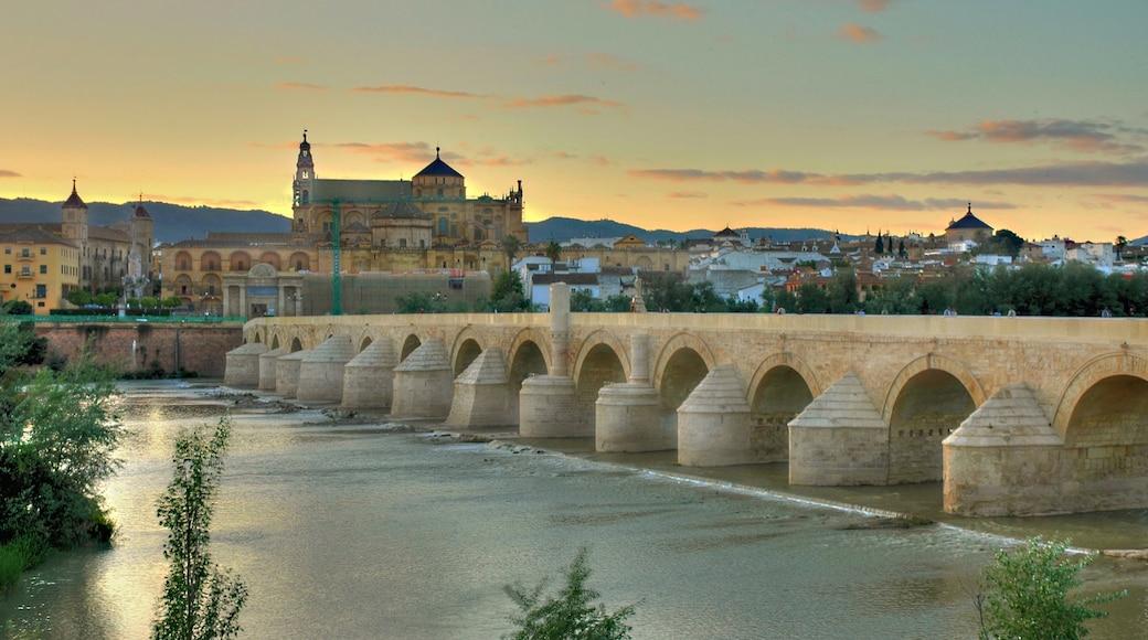 Córdoba ofreciendo un río o arroyo, un puente y arquitectura patrimonial