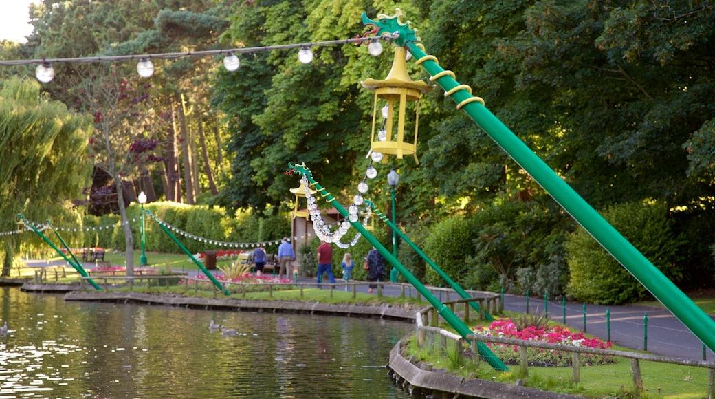 Peasholm Park showing a park and a pond