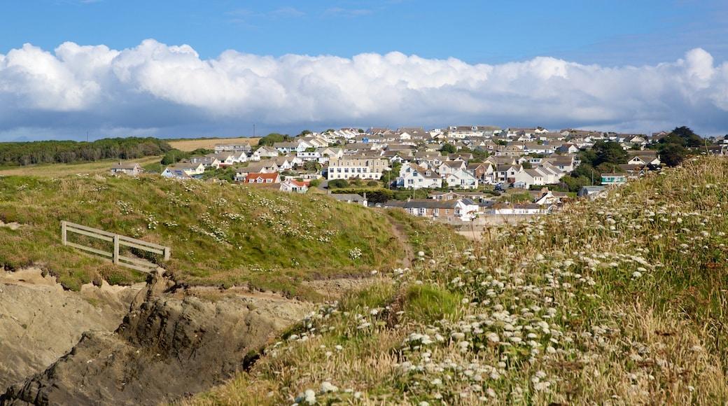 Plage de Porth qui includes ville côtière