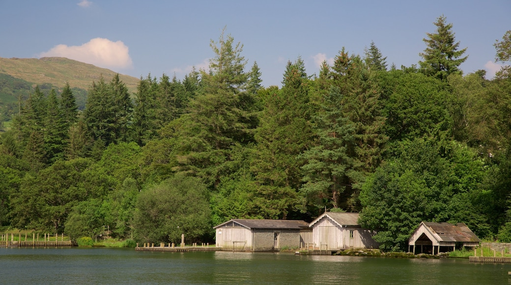 Lake District Visitor Centre at Brockhole which includes forest scenes and a lake or waterhole