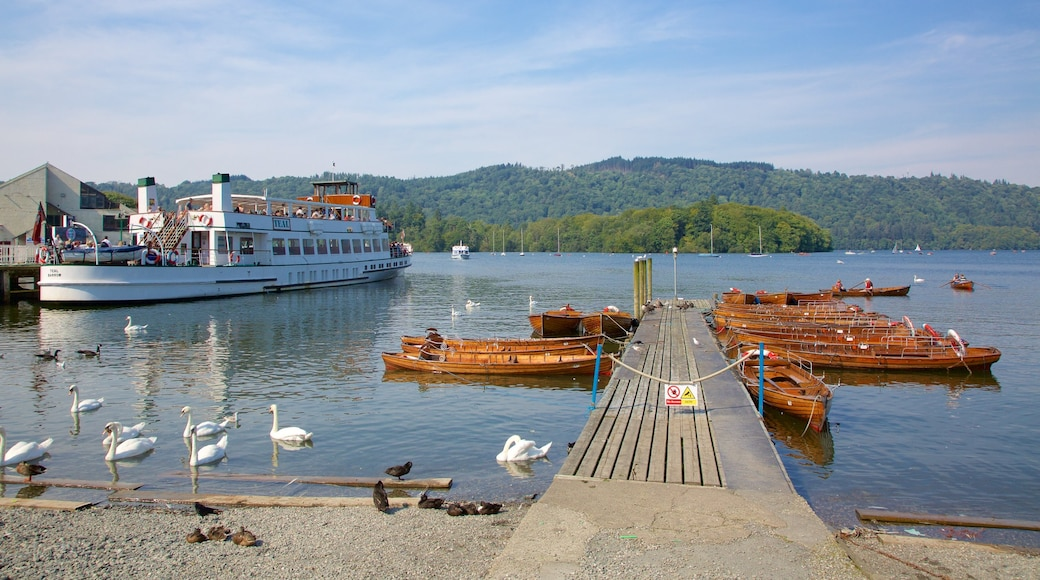 Bowness-on-Windermere featuring a ferry, kayaking or canoeing and bird life