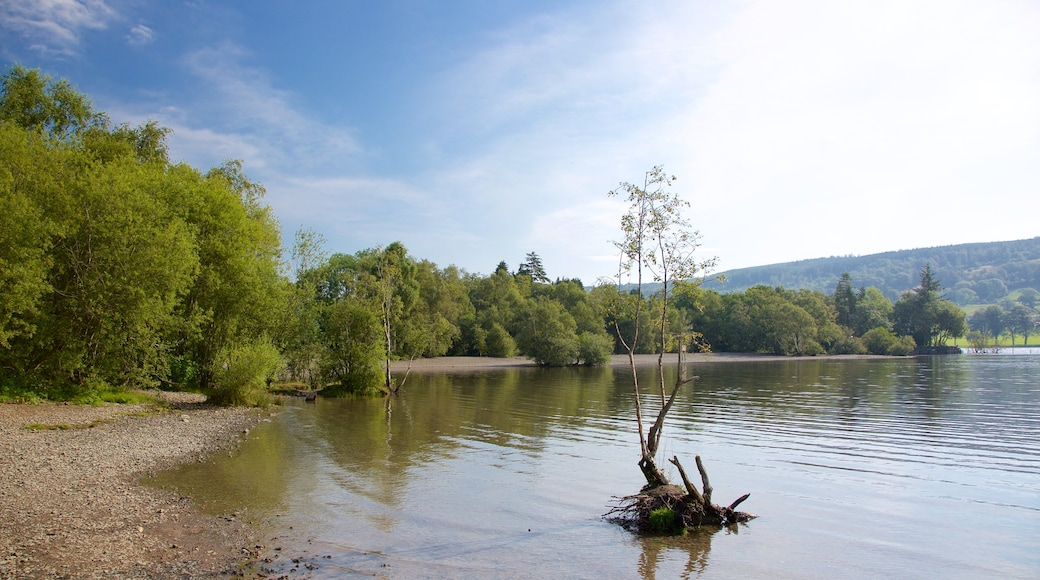 Coniston Water which includes a pebble beach and a lake or waterhole