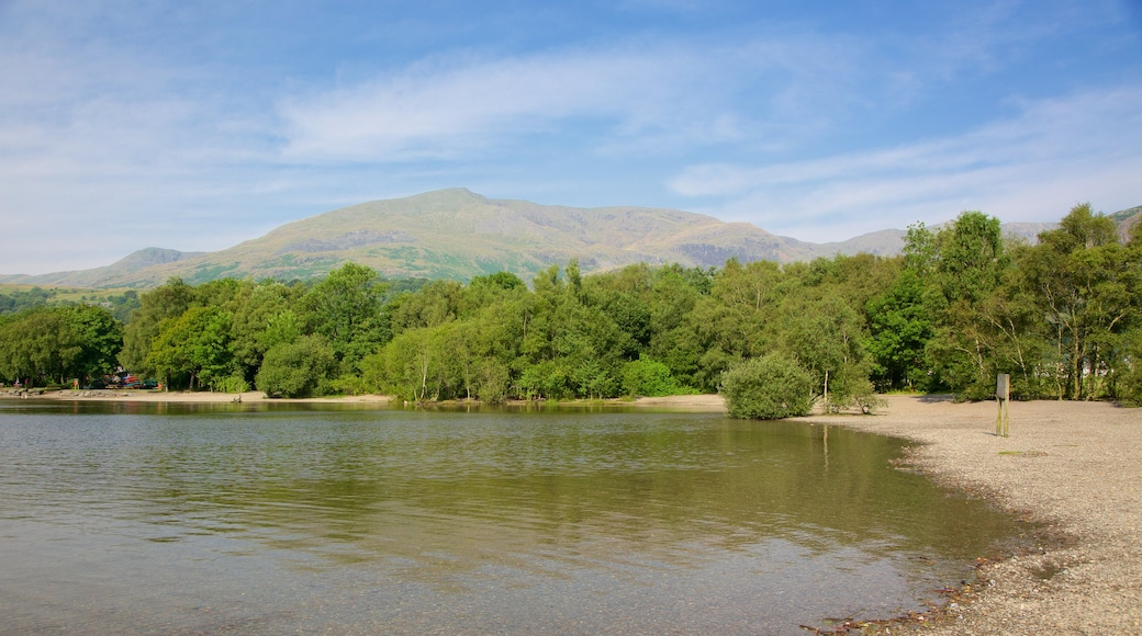 Coniston Water showing forests and a pebble beach