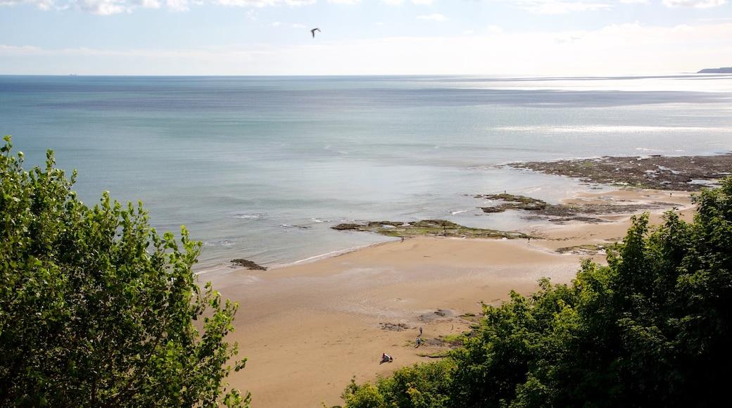 South Bay Beach featuring a sandy beach