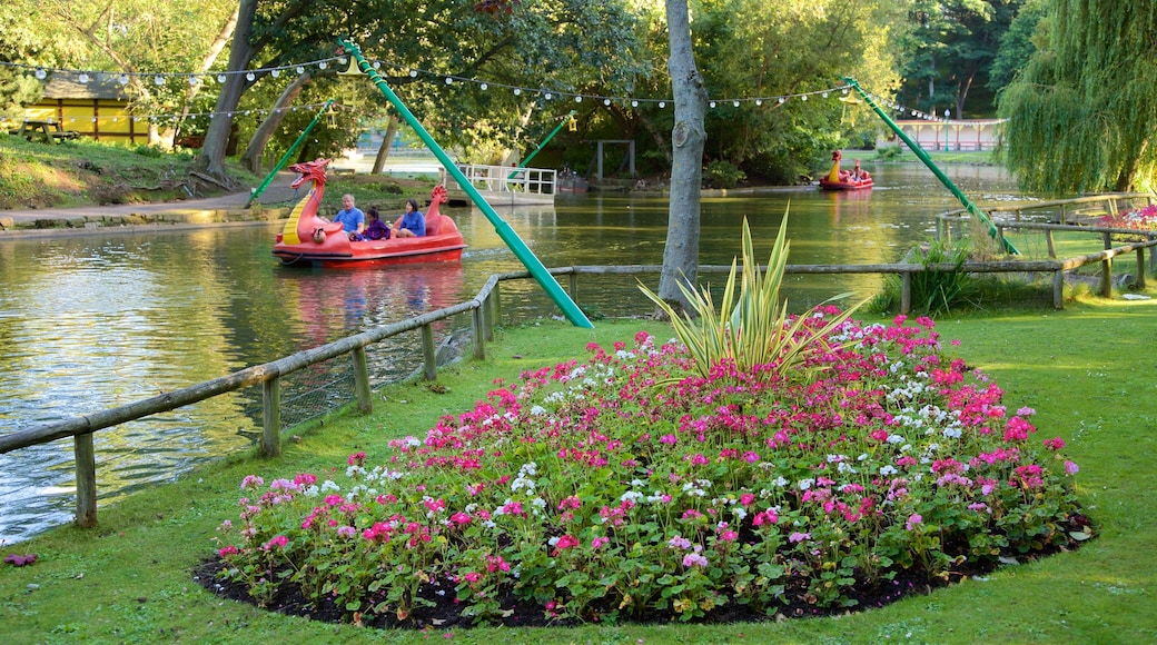 Peasholm Park which includes flowers, watersports and a river or creek