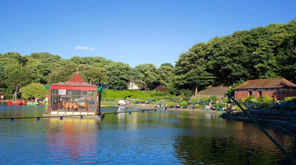 Peasholm Park showing a garden and a river or creek