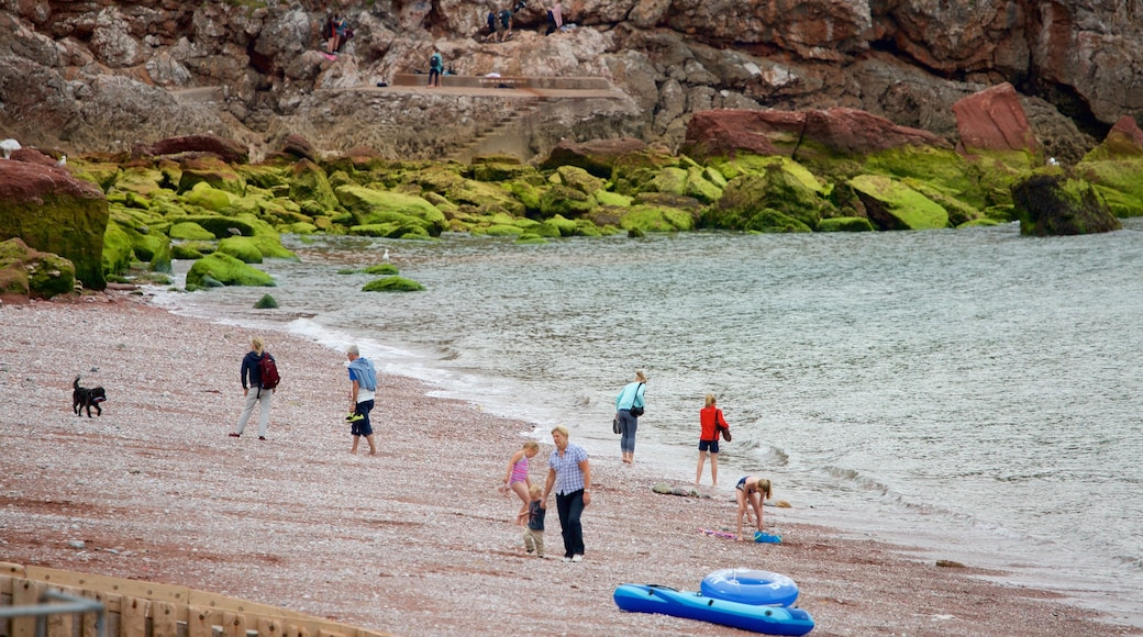Babbacombe Beach which includes a pebble beach and rugged coastline as well as a family