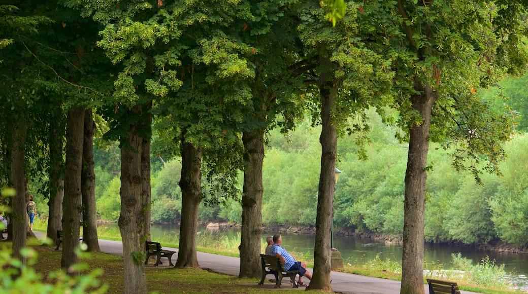 Echternach montrant jardin et rivière ou ruisseau aussi bien que petit groupe de personnes