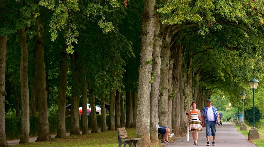Echternach montrant parc aussi bien que couple