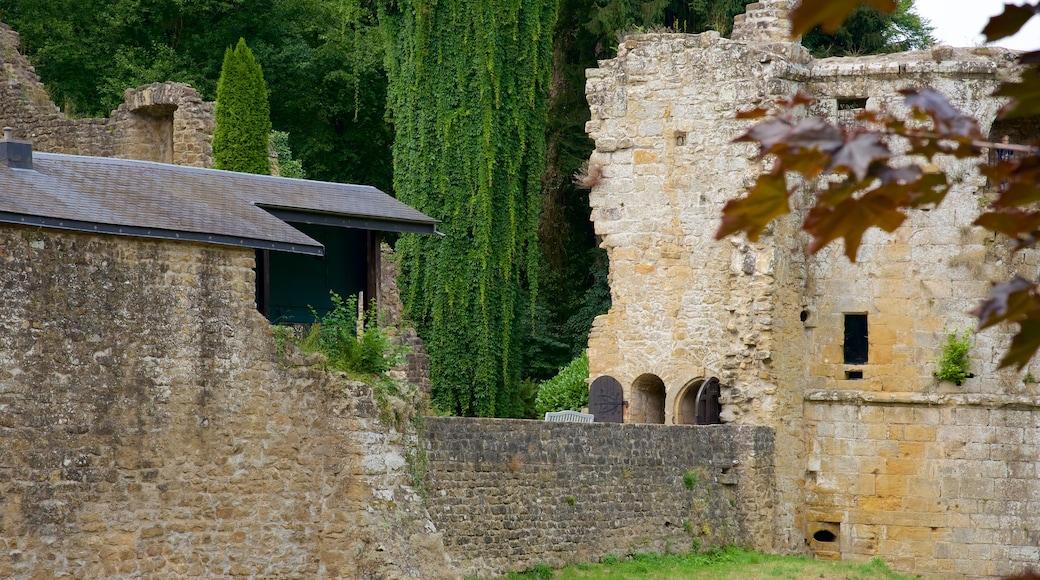 Luxemburg inclusief historisch erfgoed, kasteel of paleis en historische architectuur
