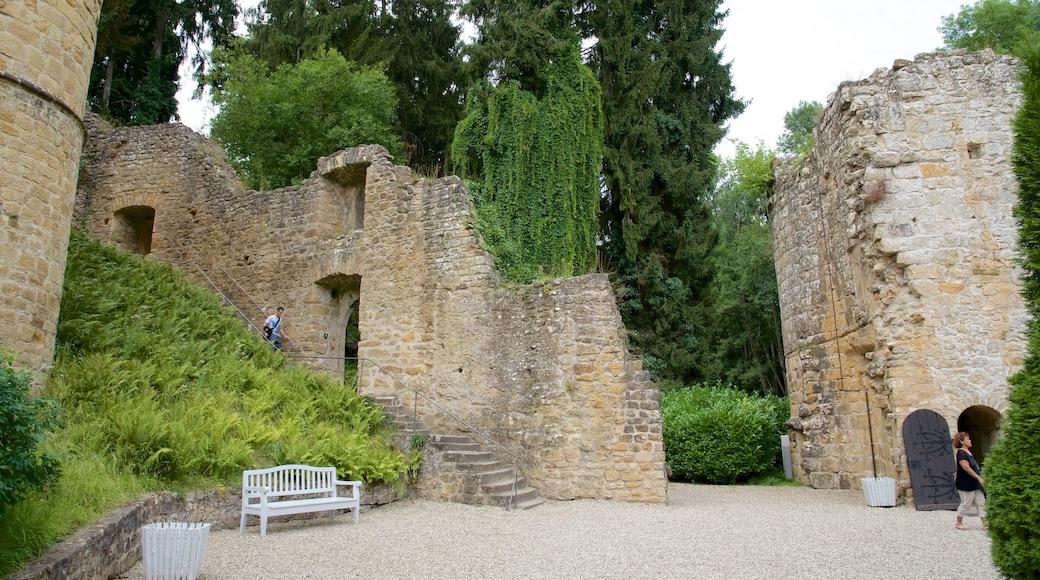Luxemburg bevat kasteel of paleis, historische architectuur en historisch erfgoed