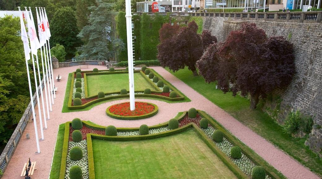 Luxemburg welches beinhaltet Garten