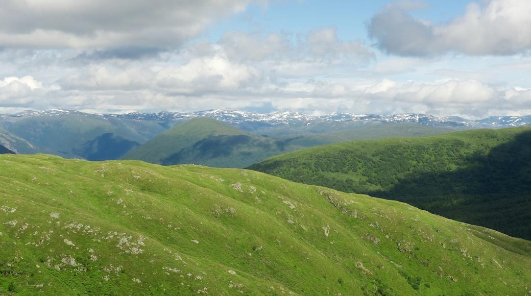 Bergen som inkluderer fjell og landskap