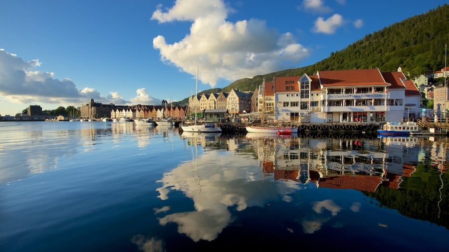 Bergen which includes boating, a marina and a coastal town