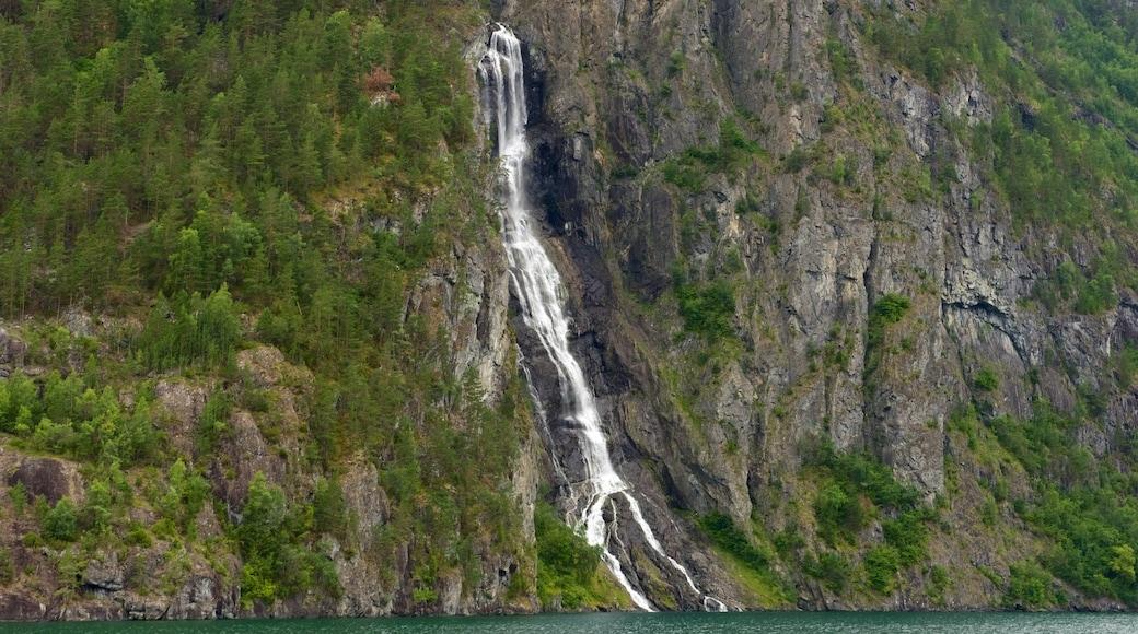 Nærøyfjord welches beinhaltet Kaskade