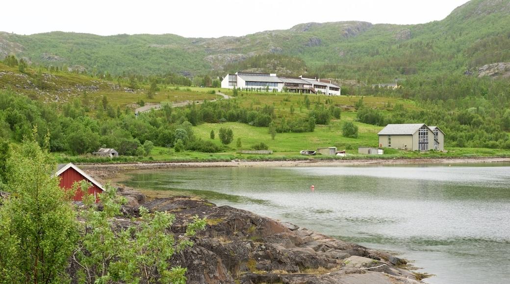 Altan museo joka esittää järvi tai vesikuoppa, metsät ja pieni kaupunki tai kylä