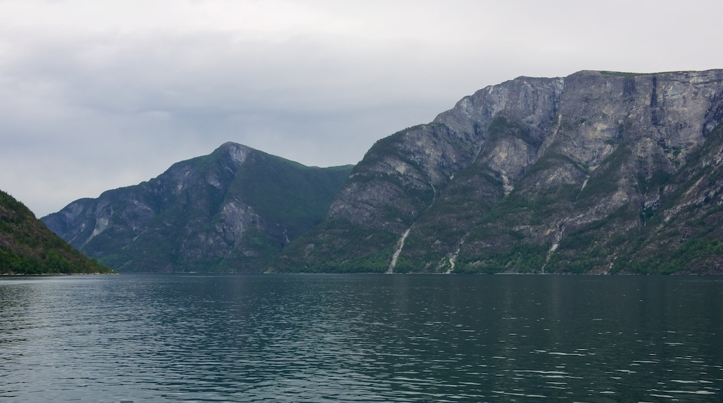 Nærøyfjord das einen Berge und See oder Wasserstelle