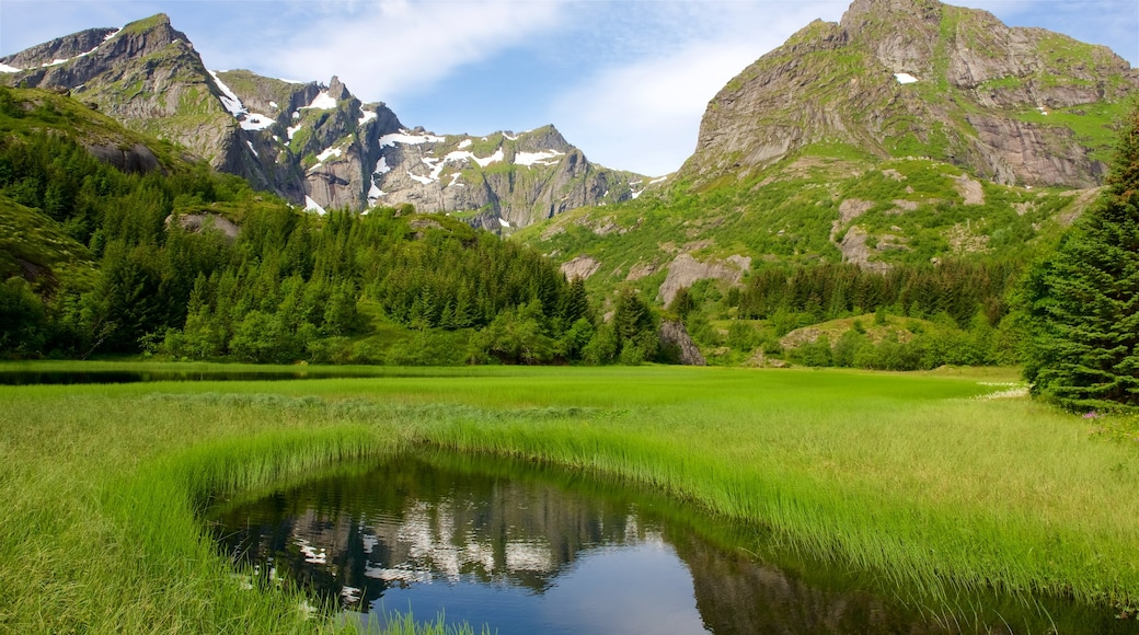 Leknes som viser fjell, landskap og dam