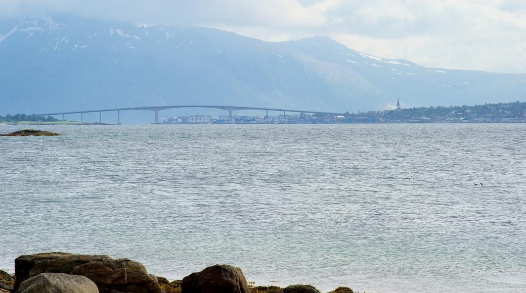 Sortland qui includes montagnes, vues littorales et pont