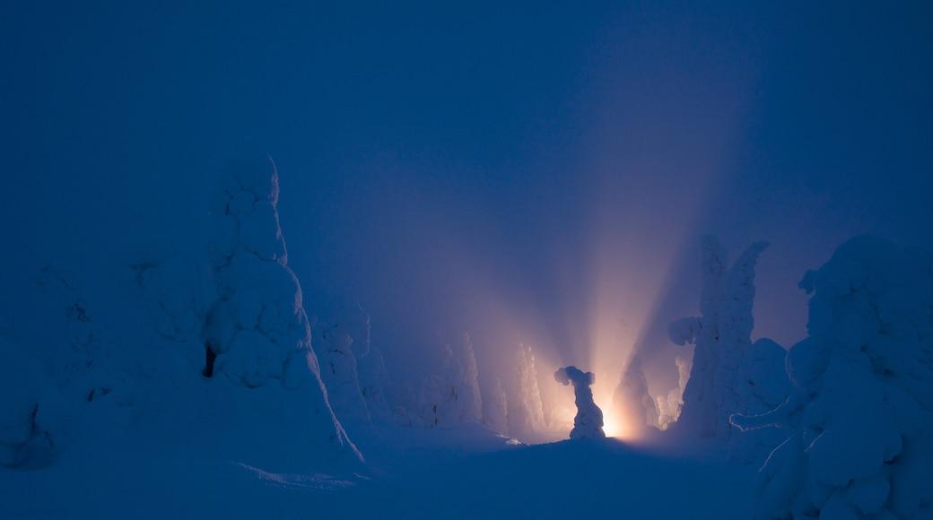 Salla joka esittää lunta ja yökuvat