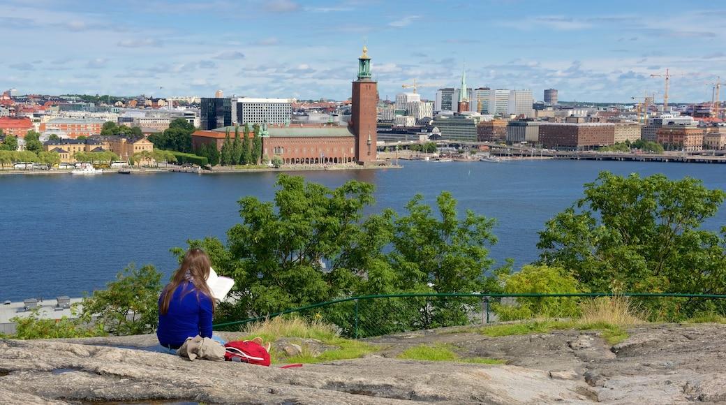 Parque Skinnarvik ofreciendo una ciudad y vistas