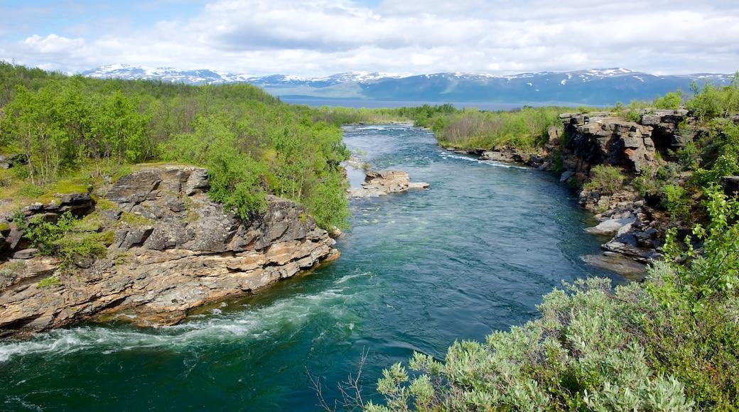 Abisko National Park das einen Fluss oder Bach