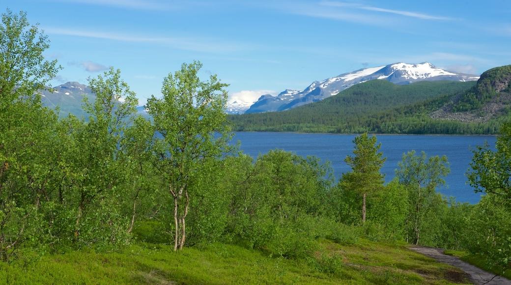 Stora Sjöfallets nationalpark som visar en sjö eller ett vattenhål