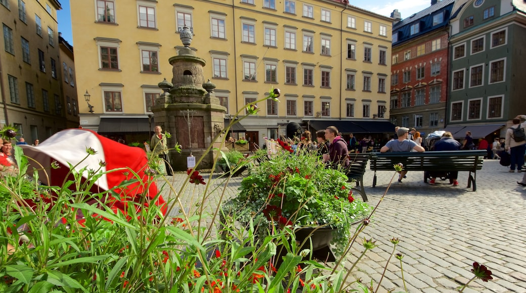 Stortorget que incluye un jardín y un parque o plaza