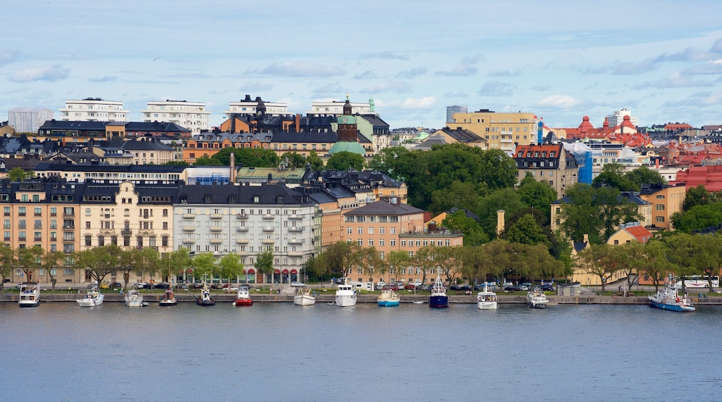 Parque Skinnarvik mostrando una ciudad y un río o arroyo