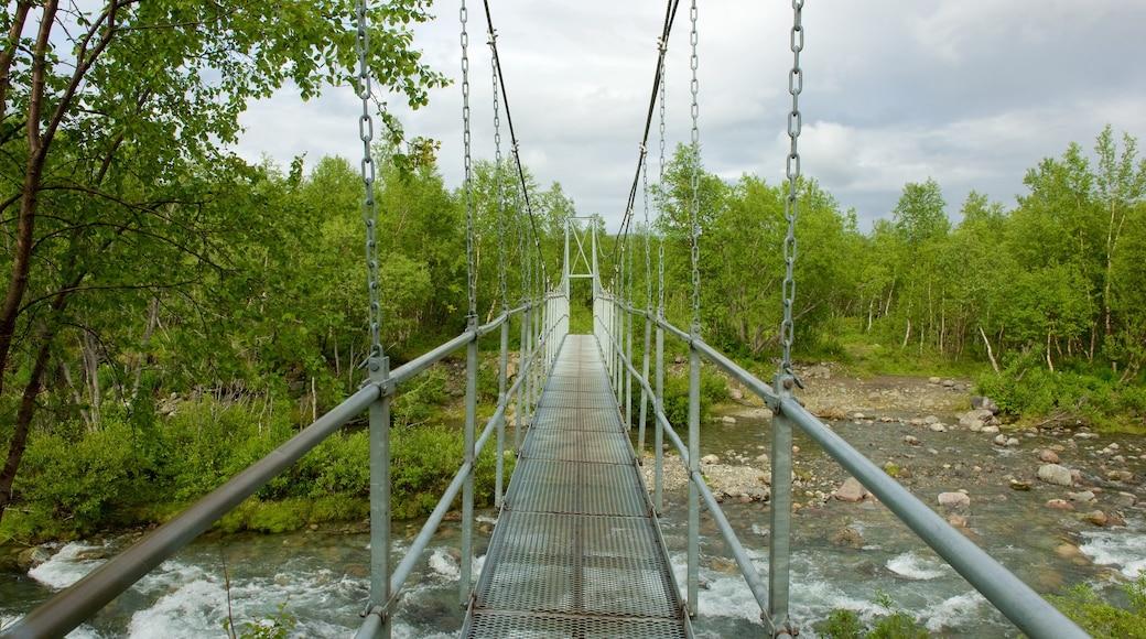 Kebnekaise som inkluderer elv eller bekk og bro