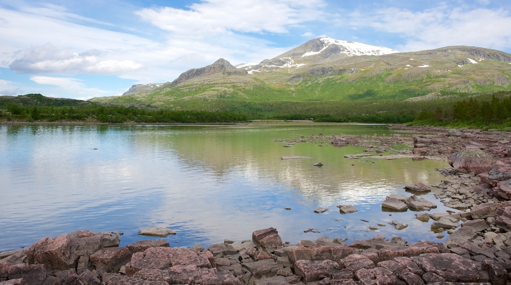 Stora Sjofallet National Park featuring a lake or waterhole