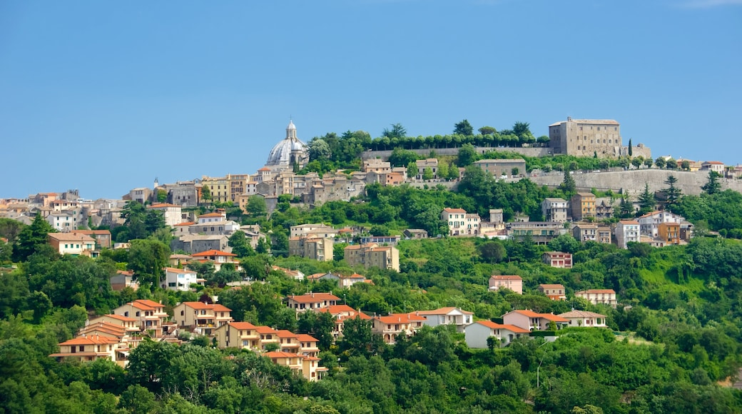 Montefiascone which includes a city