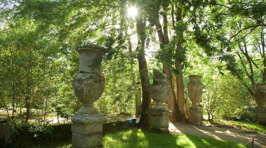 Parco dei Mostri showing forest scenes